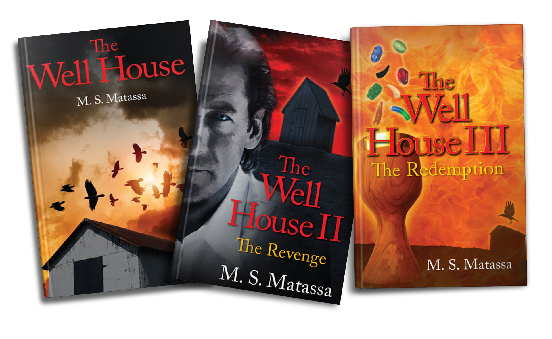 The-Well-House,-Author-Michael-Matassa